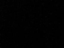 czarny szwed